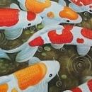 대형 구어도 (비단 잉어) 그림