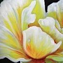 부귀화 - 노란 모란꽃 (목단꽃) 그림 5 (60X80CM)
