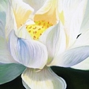 연꽃그림 - 복을 부르는 그림 (50X60CM)