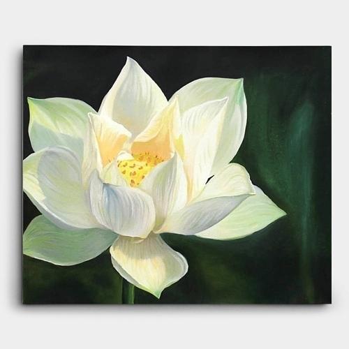 연꽃 그림 3 1 500x500 - 인테리어 액자, 캔버스 액자, 유화 그림 전문 쇼핑몰
