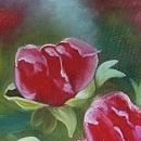모란꽃 (목단꽃) 그림 10 (70X80CM) 13