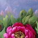 모란꽃 그림 22