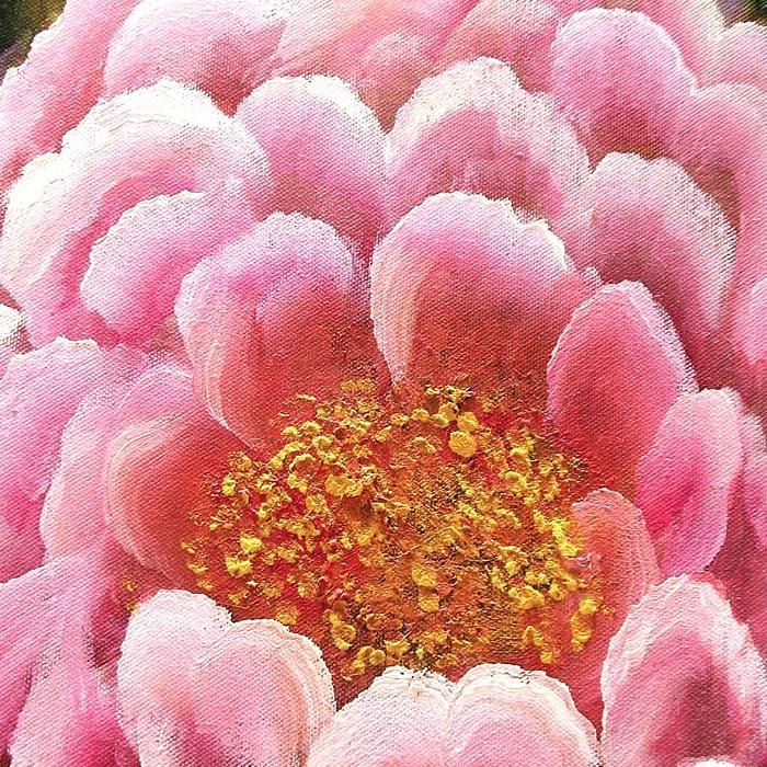 모란꽃 그림 20
